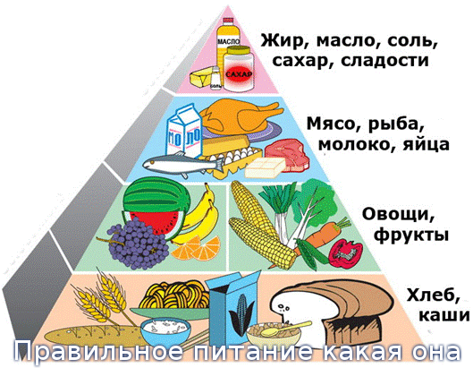 правильное питание на массу пример
