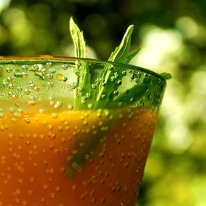 Влияние свежевыжатых соков на организм человека